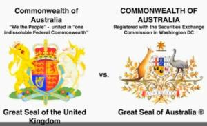 Australian Great Seals