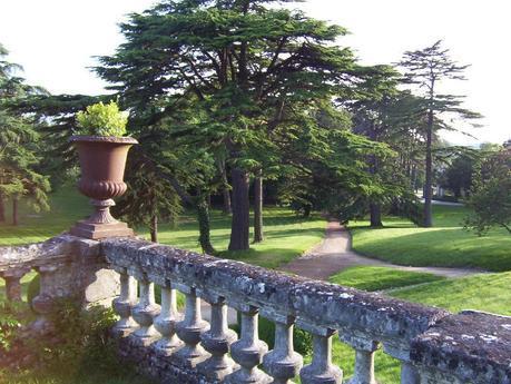 Château de la Bourdaisière Castle forest and lawn -  Loire Valley - France