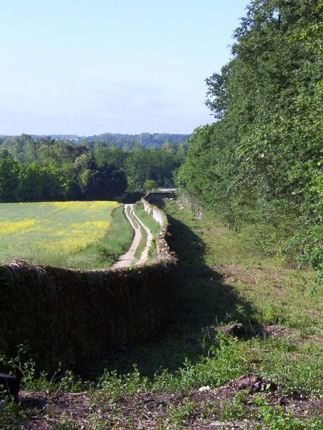Château de la Bourdaisière Castle - Château de la Bourdaisière Castle - stonewall fence in farm fence  Loire Valley - France