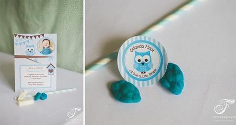 A Blue Owl Themed Party for a 1st Birthday by Little Dimple Designs
