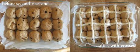 Two trays of dough buns showing the difference before and after the rising effect of the yeast.