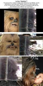 The clips are on the left and the Wookie costume is on the right. Compare and contrast.