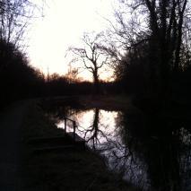 Weekend Walk to Blow Away The Cobwebs..