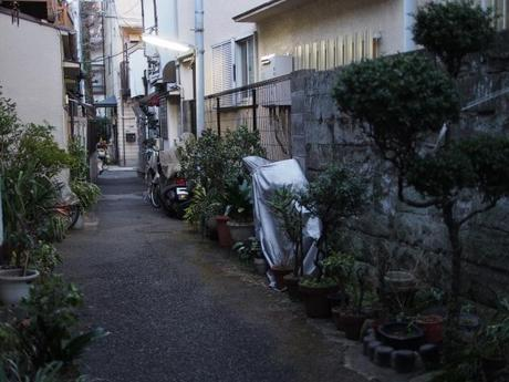 s P2230281 品川宿,高層ビル群のこぼれ陽が当たる路地裏 / alleys in Shinagawa,used to be the last post‐town on the road from Kyoto to Edo.