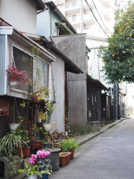s P2230232 品川宿,高層ビル群のこぼれ陽が当たる路地裏 / alleys in Shinagawa,used to be the last post‐town on the road from Kyoto to Edo.