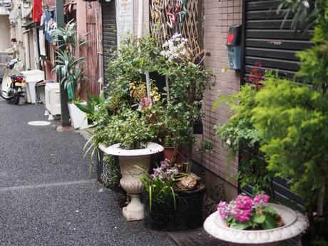 P2060158 消えつつある池袋の横丁 /  attractive alleys are disappearing from Ikebukuro,metropolitan city