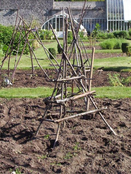A garden trellis in the vetegable garden at Château de la Bourdaisière in France