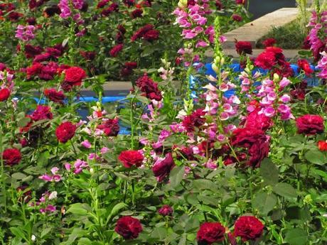 Philadelphia Flower Show 2013 - Part Deux