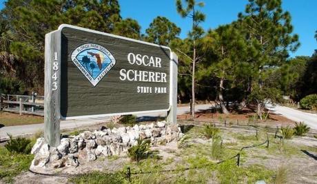 Oscar Scherer State Park Hiking Florida Style Paperblog