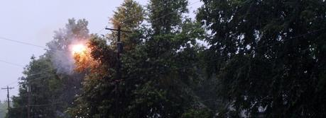 Tree limbs creating a short circuit in electrical lines during a storm. This typically results in a power outage in the area supplied by these lines (Credit: Robert Lawton, http://commons.wikimedia.org/wiki/User:Rklawton).
