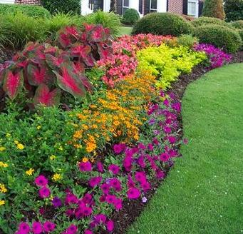 Flower beds paperblog for Backyard flower bed ideas