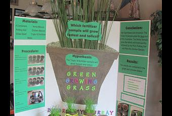 Brailey S Fifth Grade Science Fair Project Green Growing