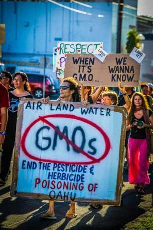 Anti GMO demonstration in Hawaii. (Photo: Kai Markell)
