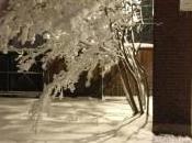 Record March Snow Storm Impacts Louis, Missouri