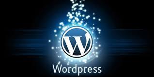 25 New WordPress Themes