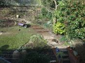Garden This Weekend April 2013
