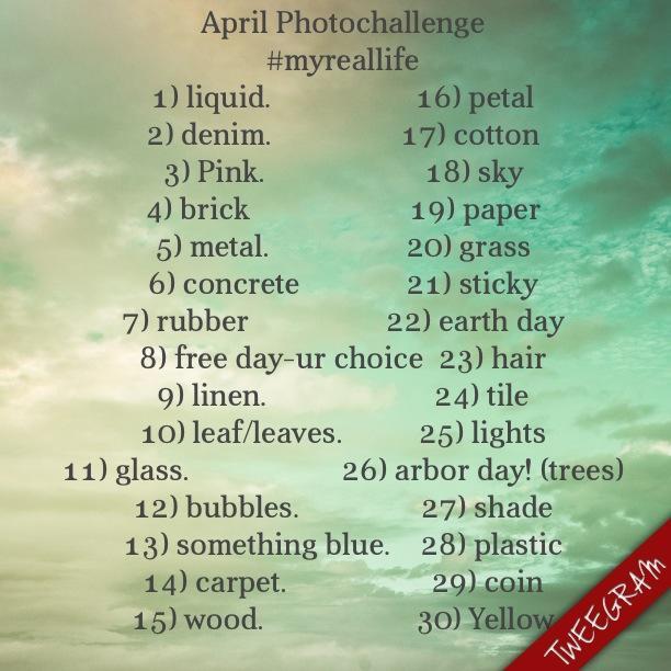 Foto al Día | Desafío de fotos de abril - JudithsFreshLook.com