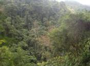 Revisiting Casaroro Falls Valencia