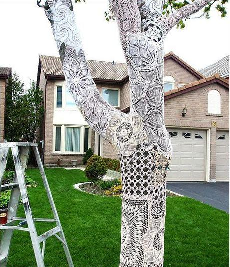 Lace Covered Tree