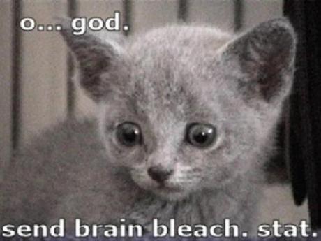 brain bleach alert