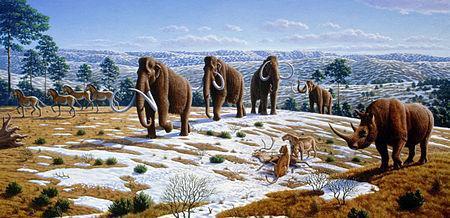 Pleistocene-Fauna