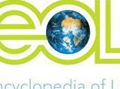 Encyclopedia Life Brings World's Organisms