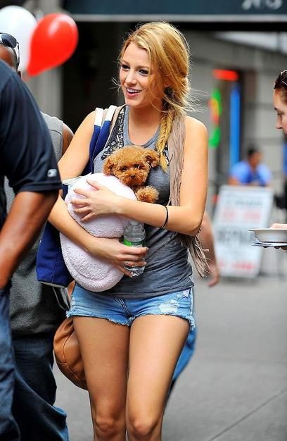 Celebrity Idol with their dogs