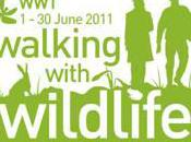 Announces National Walking with Wildlife Competition Winner