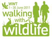 WWT announces the national Walking with Wildlife competition winner
