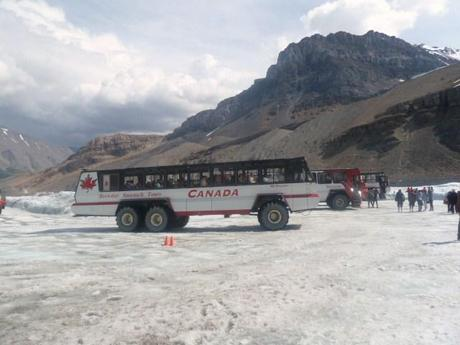 Ice Explorer on the Columbia Icefields