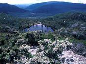 Tasmania, Part Hobart Queenstown