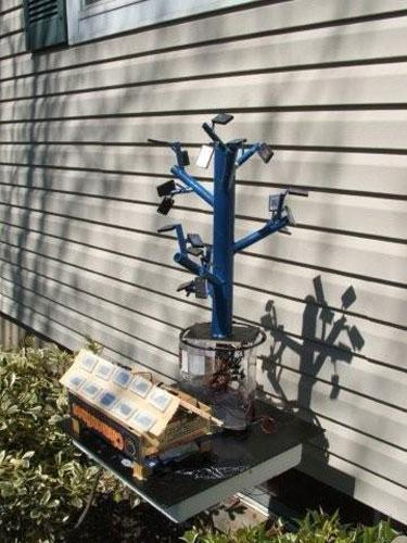 13 Year Old Makes Solar Panel Breakthrough By Mimicking Nature, Or Does He?