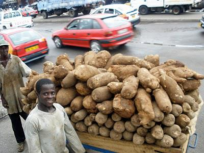 A Starchy Post - the mighty yam and others