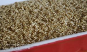 Amish Recipes: Baked Oatmeal