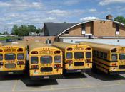 Seatbelts School Buses