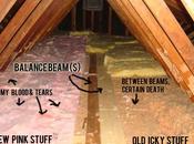 Won't Renovation Realities: Attic Insulation