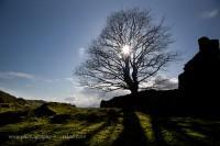 Silhouette of an abandoned croft at Sailaen, Lismore