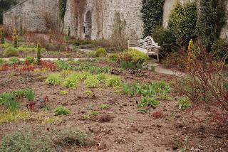 Garden no: 4 on the welsh journey - I get to Bodnant