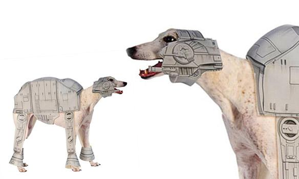 DOGS Dressed in Star Wars Costumes All Year u0027Round!  sc 1 st  Paperblog : dewback dog costume  - Germanpascual.Com