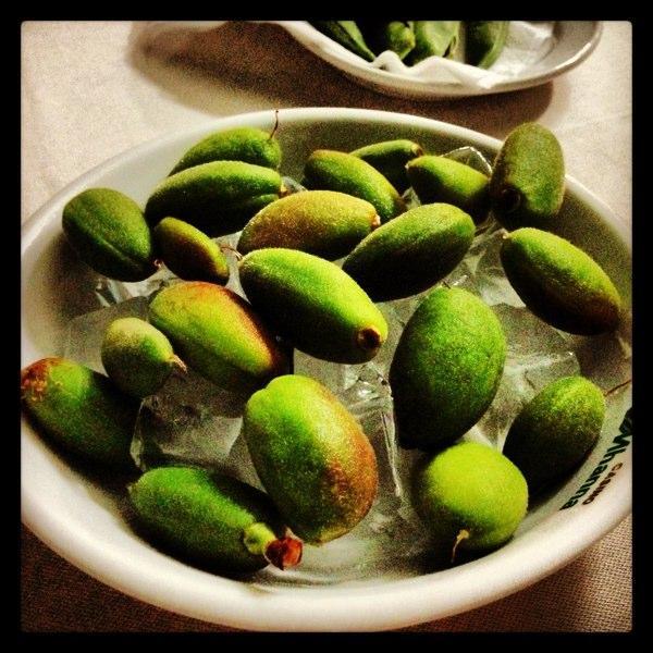 Mhanna antelias serving premium lebanese food paperblog