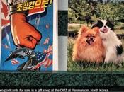 Bad, Puppies Good: Postcards Sale North Korea; Earthquakes, Syria Chemical Weapons