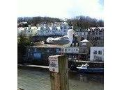 East West Looe, Cornwall