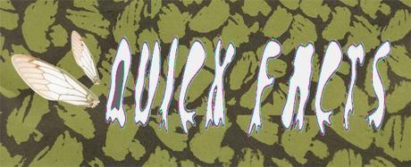 Quick Facts AUSTIN PSYCH FEST 2013 RECAP