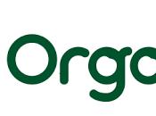 Organix Finger Food Review