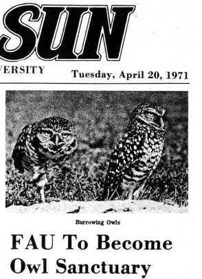 FAU owl sanctuary