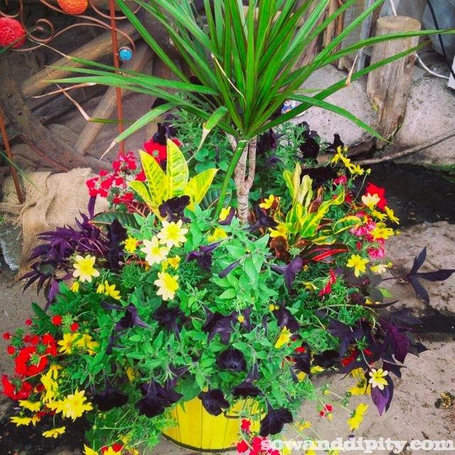 Flower Garden Design Paperblog