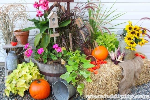 Fall Flower Garden PlansFlowers Ideas