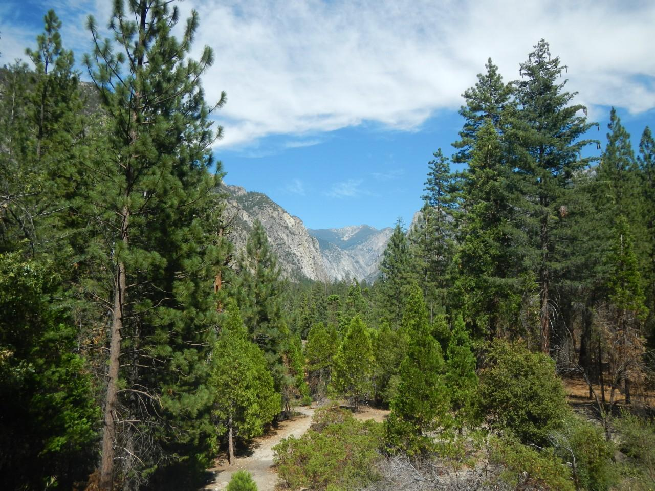 yosemite national park essay