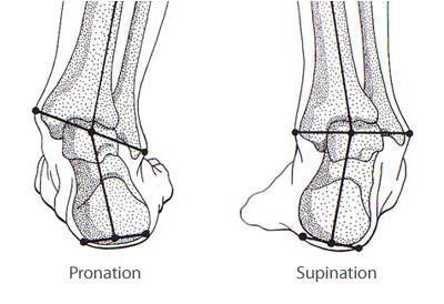 foot-pronation-supination