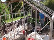 Greenhouse Reborn (x2)